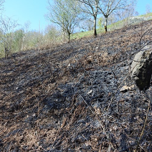 2018.04.18 North Hill fire (2) low res.jpg