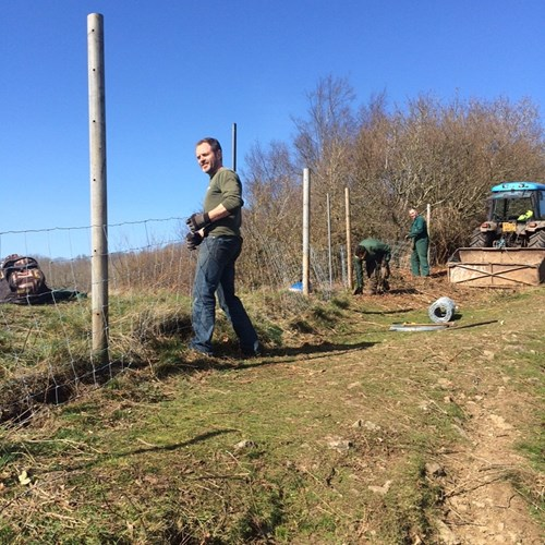 Field Staff Replacing Gullet Quarry Fencing (3) low res.jpg