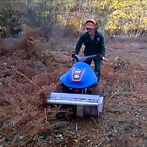 Mowing Purlieu Field Nov 2018.png