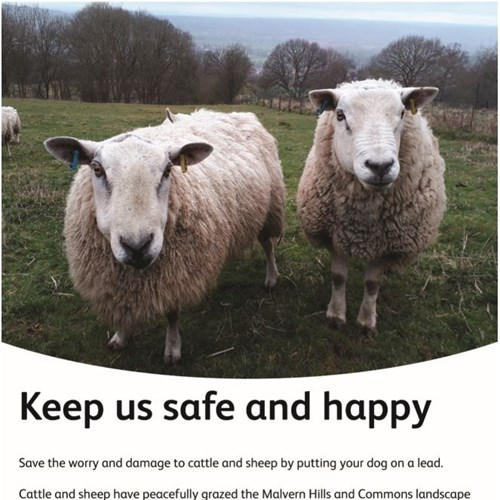 Livestock compartment signage safe sheep low res.jpg