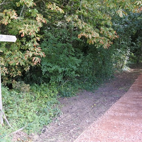 Community Woodland path improvements web.jpg